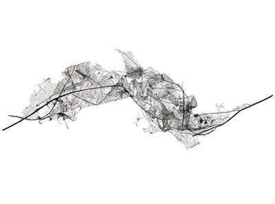 leaf_05