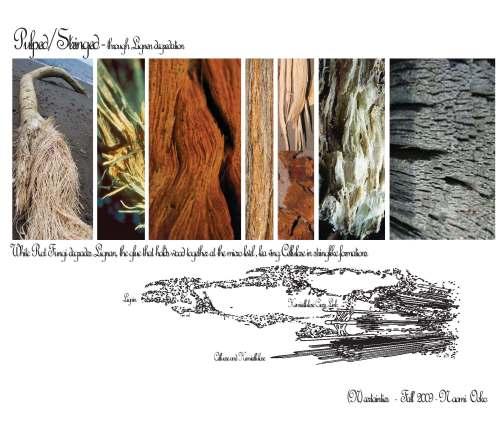 2009.10.01_presentation_Page_1