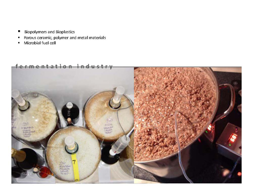 yeast_Page_09