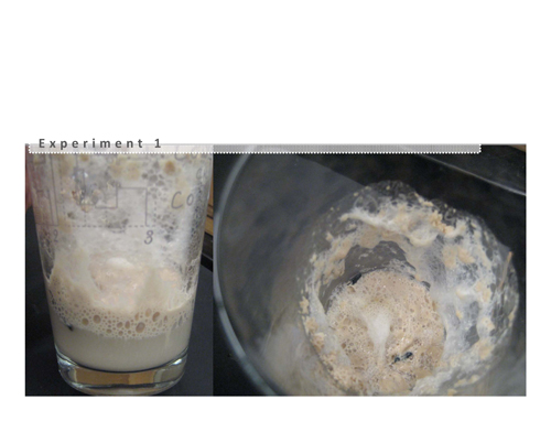 yeast_Page_14